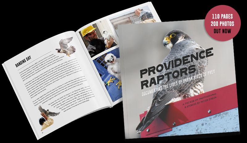 ProvidenceRaptors Book